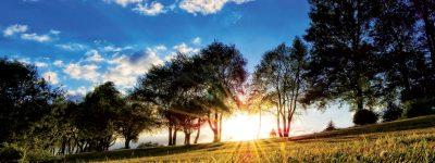 Beautiful-Summer-Nature1-filtrato-WEB